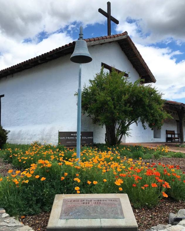 California poppies in bloom in Spring 2016 at thehistoric Mission San Francisco Solano in Sonoma, California