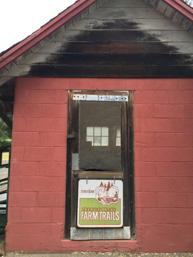 Oak Hill Farm is a member of Sonoma County Farm Trails, a non-profit that promotes local farms, CSAs, ranches, cheesemakers, vintners and more. When you see this sign, you will know you are supporting sustainable agriculture.