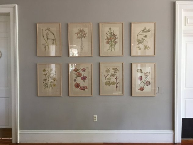 Original scientific illustrations of California wildflowers decorate the walls at the General's Daughter