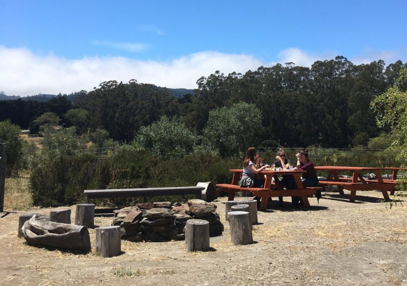 Picnic area at Heidrun Meadery, Point Reyes Station, California