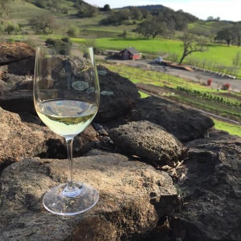 Wine tasting Wine tasting at Jordan Winery, Healdsburg, Californiaat Jordan Winery, Healdsburg, California